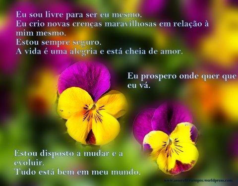 flowers-670192_1920 (1) (1)